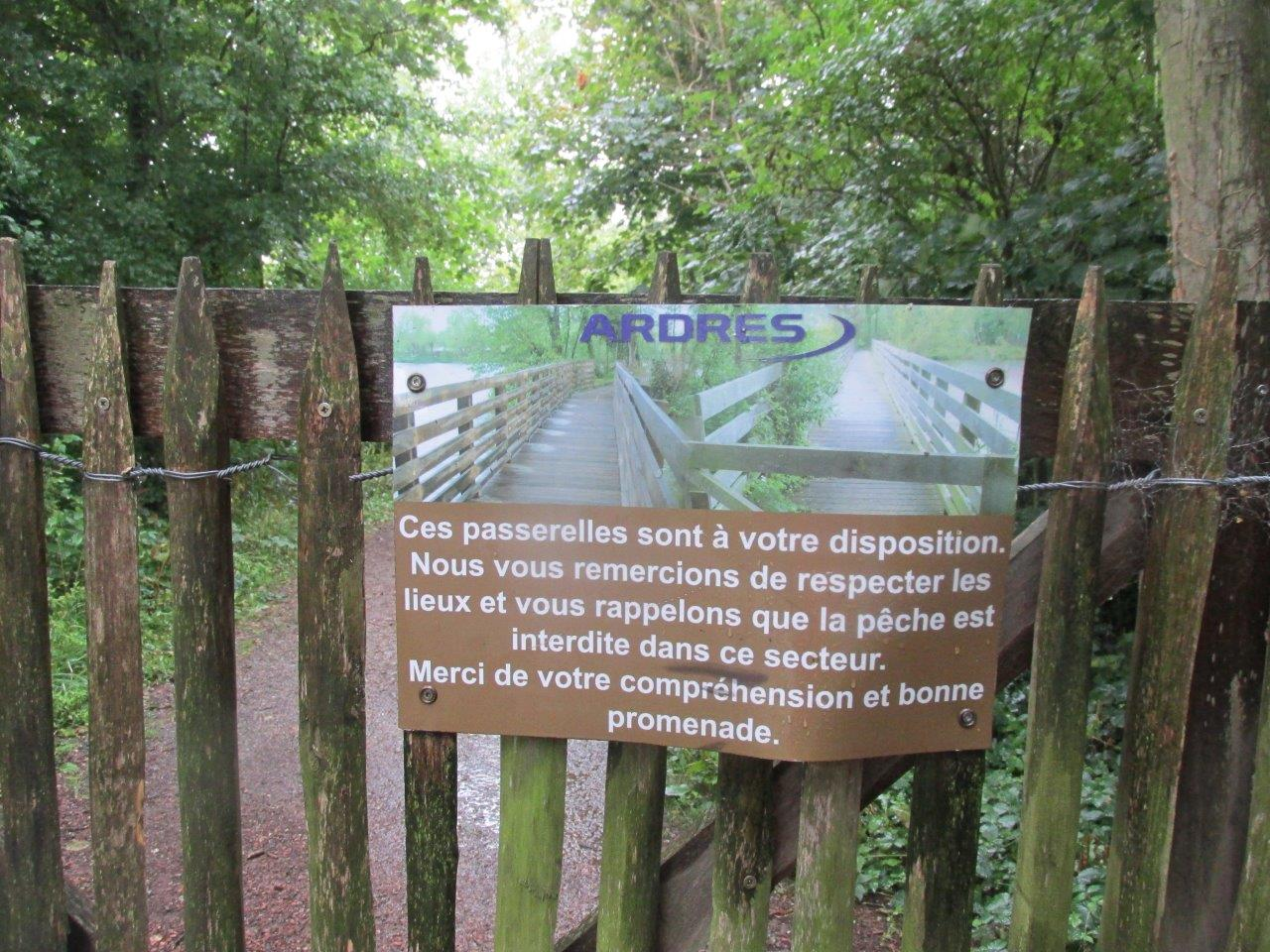Ardres Thierry (11)