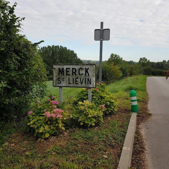 Merck ap 3